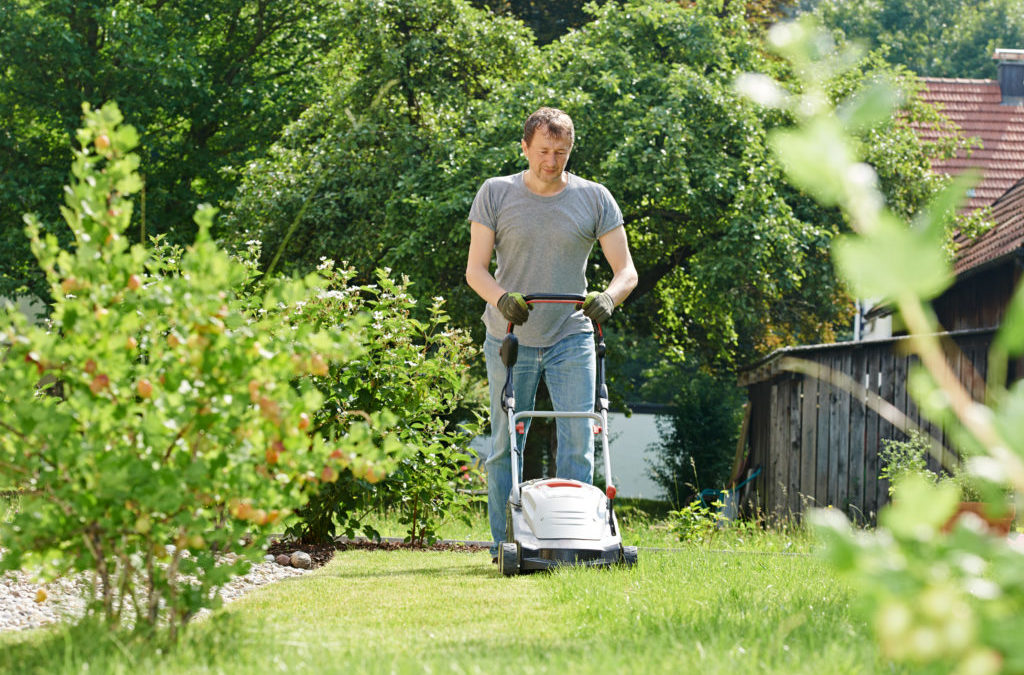 Mow Your Lawn or Lose Your House!
