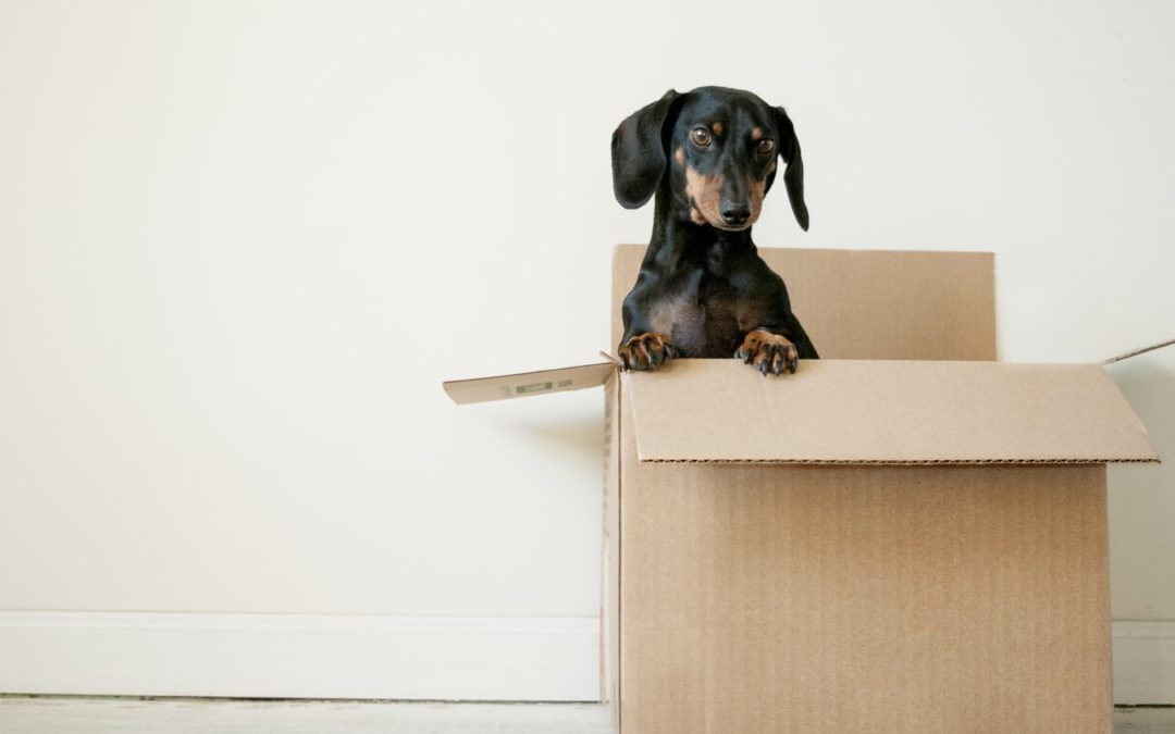 Is it time to move out of your apartment?